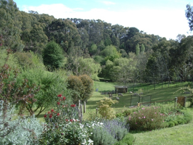 ipic360.com listing search / Lorikeet Lane Bed & Breakfast